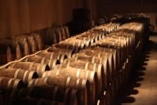 Prodej a dovoz vína