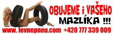 www.LevnePNEU.com