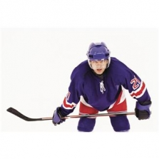 Hokejové hole, saně