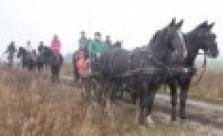 Vyjížďky na koních do přírody
