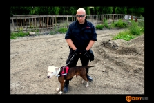 Fyzická ostraha objektů - psovod
