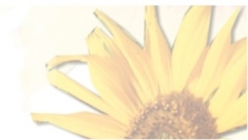 Slunečnice, centrum pro zdravý životní styl