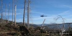 Těžba dřeva vrtulníkem