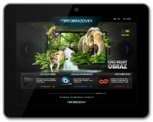 Firemní/ produktová online prezentace (www.obriobrazovky.cz)