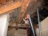 Ochrana a sanace dřeva