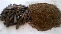 Spracovanie biomasy - paliva (pelety, brikety)