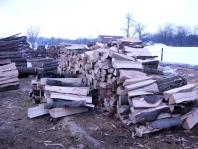 Palivové dřevo - tvrdé