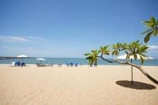 http://www.aztravel.sk/detail-zajazdu/44964719:botany-beach-resort-pattaya-thajsko.html