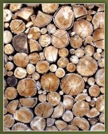 Palivo jehličnaté (měkké), bříza, buk a dub o délkách 25 cm, 33 cm, 40 cm, 50 cm