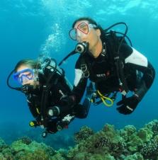 Potápanie