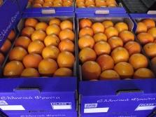 Velkoobchod ovoce a zelenina-zasobováni