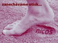 NICOS s.r.o. - Grafické a typografické služby