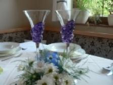 Carmen křišťál a hyacintová