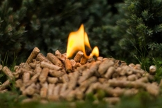 Výroba a predaj kvalitných drevených peliet a brikiet